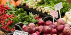 Stanford, Don't Lie About Benefits of Organic Foods!