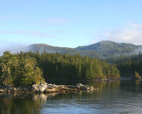Protect the Tongass National Forest