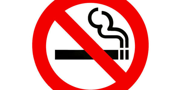 No Smoking In Public Places Law On November 8 2005