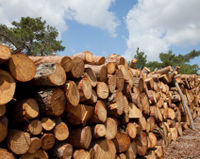 Liberia - Close Logging Loophole