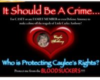 Caylee's Law- A law to protect Children