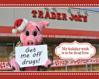 Help Get Joe the Pig off Drugs!