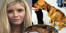Prosecute Former MTV Star For Animal Cruelty, Banning Her From Future Animal Ownership