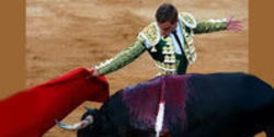 Tell Coca-Cola to Stop Sponsoring Bullfighting