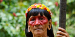 Support the Tribes of the Amazon