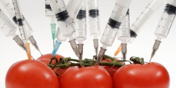 Insist on Labeling of All Genetically Modified Food!