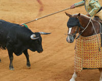Don't Show Bullfights on Public TV!