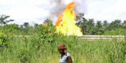 Hold Shell Accountable for Niger Delta Pollution and Human Rights Abuses
