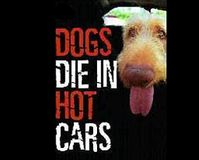 Tell Wal-mart- Reinstate Employee for Protecting Dog Left in a Hot Truck