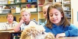 Teach Animal Welfare In UK Schools