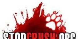 Federal Court for Animal Crush Videos