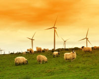 Ask the New UK Energy Secretary to Stand Firm on Wind Farms