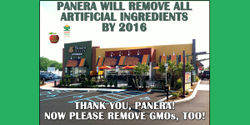 Panera, please remove GMOs along with the artificial ingredients.