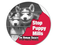 Prohibit Man from Operating Another Puppy Mill-1,200 Puppies Dead