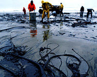 Shell – Stop Disputing Amount of Oil Spilt in Nigeria