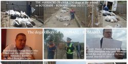 International Outrage at the Massacre of over 230 dogs in the municipal shelter, BOTOSAN, Romania