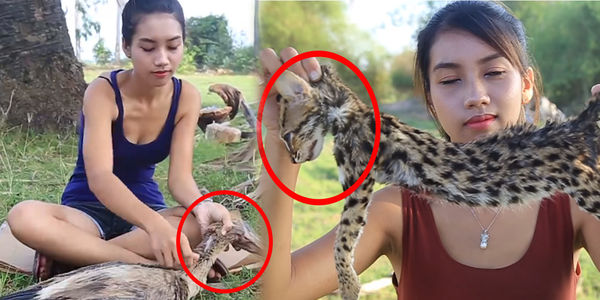 Image of: Couple Filmed This Couple Filmed Themselves Eating Rare Animals To Make Buck Ask Youtube To Ban Them Petition Site Petition This Couple Filmed Themselves Eating Rare Animals To Make
