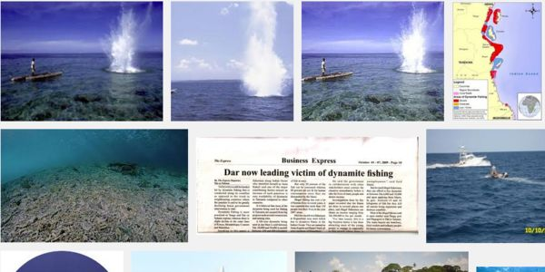 Stop dynamite fishing in Tanzanian waters