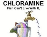 STOP USE OF CHLORAMINE IN DRINKING WATER