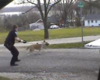 LA GRANGE P.D. SHOOTS SCARED DOG TWICE ... MAKE SURE THEY PAY!