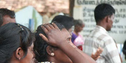 UK: Stop Deporting Tamils to Sri Lanka