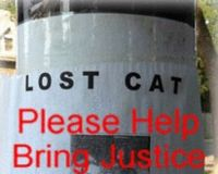 Men Torture & Kill Cats in Helena, Montana!!