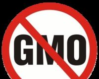 Ban The Growth of Genetically Modified Crops on Vancouver Island