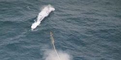 End Whaling in Norway!