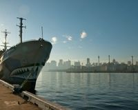 Demand Japanese Whaling Ships Abide by International Law