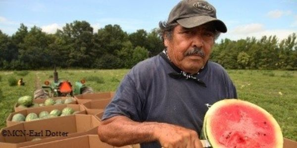 Farmworkers Feed the World- Protect them from Pesticides