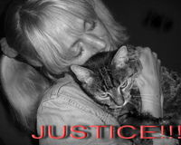 NIKKI,MY LOVE,MY KITTY DIED BECAUSE VET MADE MISTAKE.I WANT JUSTICE!!!!!!!!