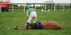 End the Grand National once and for all.