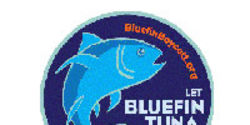 Take the Pledge: Join the Bluefin Boycott