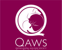 Please help find Qatar Animal Welfare Society a new home!