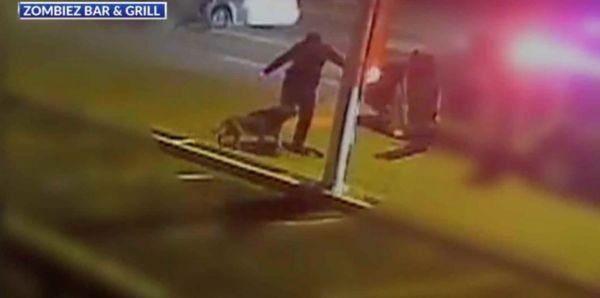 Video footage of officer kicking k9 partner