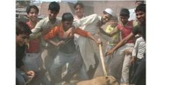 STOP DOG ABUSE IN INDIA