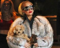 Tell Lady GaGa- Fur Coats are Animal Cruelty