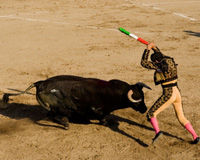 Help Ban Bullfighting