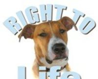 Pledge to Help Educate People on BSL