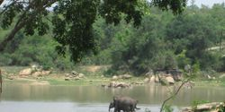 SEE BABY BOY SUNDER IN HIS NEW HOME