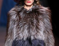 Tell Fashion Designers to Stop Using Wolf Fur