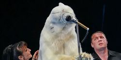 Stop Russian Circus Show! Polar Bears Being Made to Sing, Ice Skate and Play Football