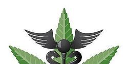 Urge US GVT to legalize medical marijuana