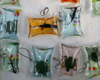 Stop Sealing Fish, Turtles, and Lizards in Keyring Poly Bags