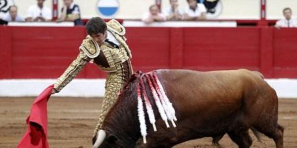 THE GANDIA BULLFIGHT'KILL' 9TH AUGUST 2014 WENT AHEAD DESPITE WORLDWIDE CONDEMNATION