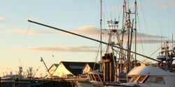 Canada - Reduce the Power of the Fisheries Minister