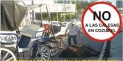 BAN HORSE DRAWN CARRIAGES IN COZUMEL, MEXICO/NO A LAS CALESAS EN COZUMEL
