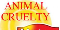 Tell Lipton Tea- STOP Animal Experiments!