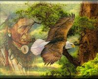 Need a click to donate button for Native Americans