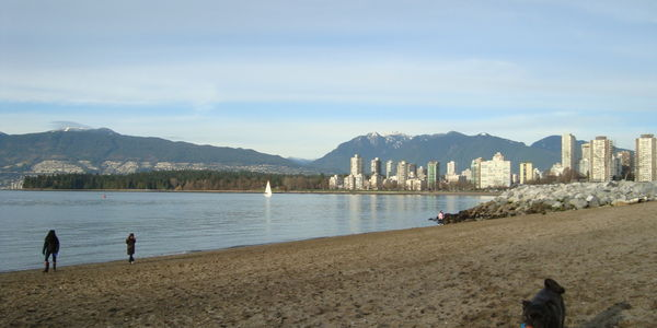 KEEP KITS DOG BEACH OFF LEASH